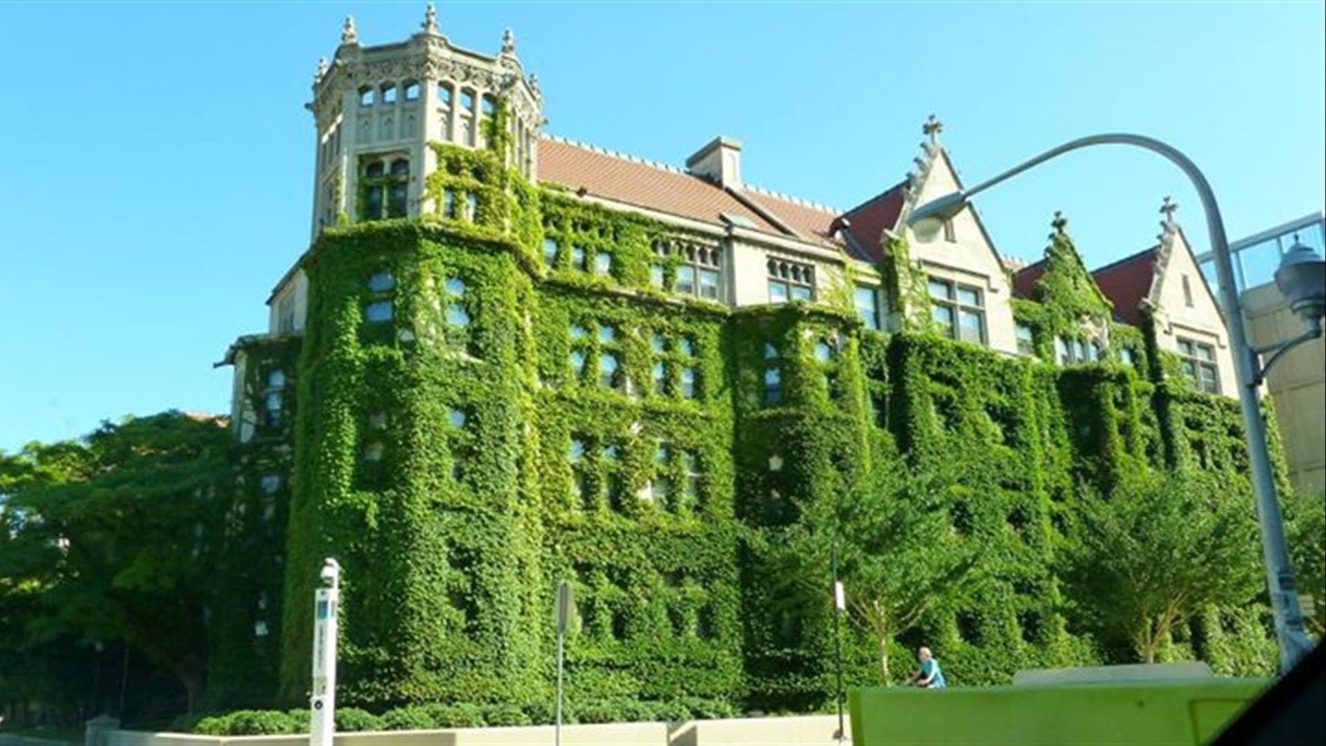 The University of Chicago Campus Green