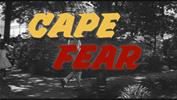 CAPE Fear: Valuation Ratios and Market Timing